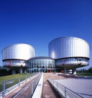 ЕСПЧ получил документы по жалобе парализованного Топехина